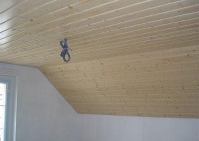 Plafond lames incolores